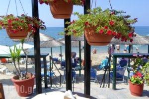 Piatsa Michalis_best prices_in_Hotel_Aegean Islands_Thasos_Potos