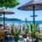 Piatsa Michalis_best deals_Hotel_Aegean Islands_Thasos_Potos