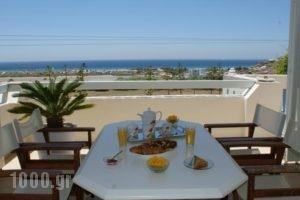 Villa Porto Rondo_lowest prices_in_Villa_Cyclades Islands_Naxos_Naxos chora