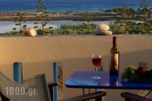 Villa Porto Rondo_holidays_in_Villa_Cyclades Islands_Naxos_Naxos chora