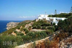 Kounenos Apartments_lowest prices_in_Apartment_Crete_Lasithi_Aghios Nikolaos