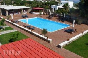 Country Villas_accommodation_in_Villa_Cyclades Islands_Paros_Paros Rest Areas