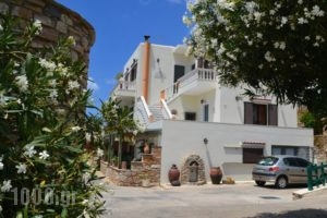 Stelios Zalonis Apartments_best prices_in_Apartment_Cyclades Islands_Tinos_Tinosora