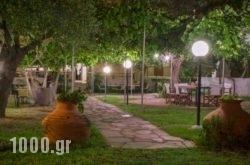 Argiro Studios in Thasos Chora, Thasos, Aegean Islands