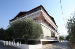 Zagkas Hotel in Limni, Evia, Central Greece