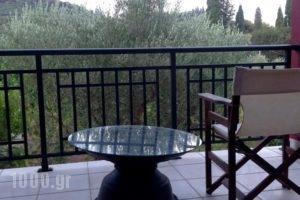 Villa Irene_best deals_Villa_Ionian Islands_Zakinthos_Alykes
