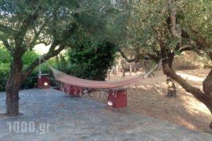 Villa Irene_holidays_in_Villa_Ionian Islands_Zakinthos_Alykes