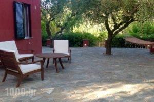 Villa Irene_accommodation_in_Villa_Ionian Islands_Zakinthos_Alykes