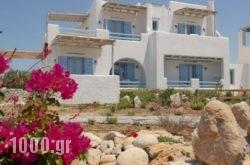 Annio Studios in Paros Rest Areas, Paros, Cyclades Islands