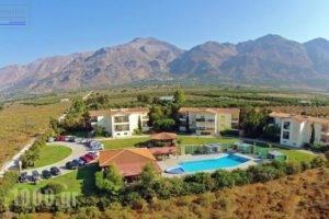 Monachus Monachus_travel_packages_in_Crete_Chania_Fragokastello