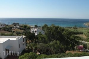 Irida Apartments_best deals_Apartment_Cyclades Islands_Syros_Syros Rest Areas