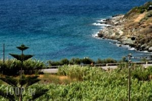 Irida Apartments_lowest prices_in_Apartment_Cyclades Islands_Syros_Syros Rest Areas