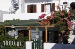 Renetta Hotel in Naxos Chora, Naxos, Cyclades Islands