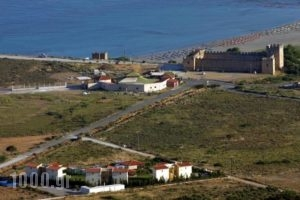 Monachus Monachus_holidays_in_Hotel_Crete_Chania_Fragokastello