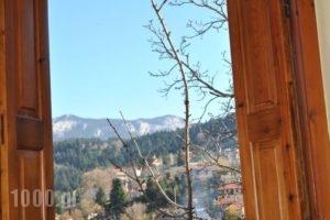 To Balkoni Tis Agorianis_lowest prices_in_Hotel_Central Greece_Fokida_Amfissa
