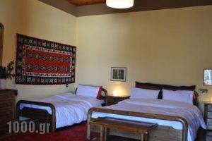 To Balkoni Tis Agorianis_best deals_Hotel_Central Greece_Fokida_Amfissa
