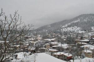 To Balkoni Tis Agorianis_accommodation_in_Hotel_Central Greece_Fokida_Amfissa