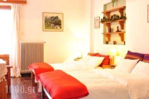 To Balkoni Tis Agorianis_holidays_in_Hotel_Central Greece_Fokida_Amfissa
