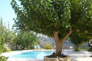 Kamares Houses_holidays_in_Hotel_Crete_Chania_Sfakia