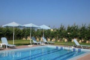Villa Helios_holidays_in_Villa_Crete_Chania_Platanias