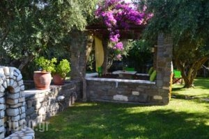 Pension'Sofia_accommodation_in_Hotel_Cyclades Islands_Paros_Paros Chora