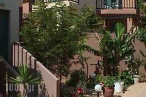 Pelamare_best prices_in_Hotel_Crete_Heraklion_Vathianos Kambos