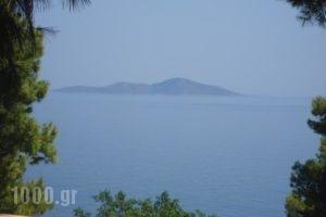 Maria Studios_accommodation_in_Hotel_Sporades Islands_Alonnisos_Patitiri