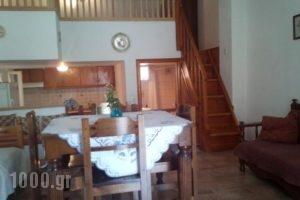 Kavadina Studios_holidays_in_Hotel_Sporades Islands_Skyros_Aspous