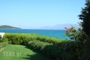The Marble Resort_holidays_in_Hotel_Central Greece_Evia_Halkida
