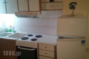 Mitseas Apartments_holidays_in_Apartment_Peloponesse_Arcadia_Astros