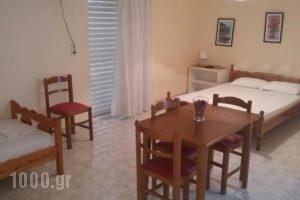 Mitseas Apartments_lowest prices_in_Apartment_Peloponesse_Arcadia_Astros