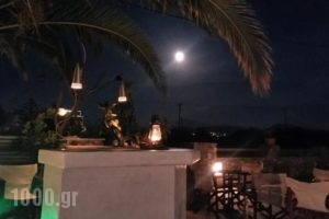 Sunlight Studios_travel_packages_in_Cyclades Islands_Naxos_Naxos chora