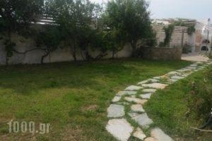 Sunlight Studios_best prices_in_Hotel_Cyclades Islands_Naxos_Naxos chora