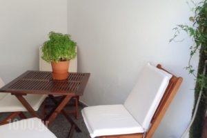 Twin House_holidays_in_Hotel_Piraeus Islands - Trizonia_Spetses_Spetses Chora