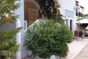 Anavra Studios_holidays_in_Hotel_Ionian Islands_Lefkada_Sivota