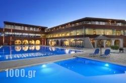 Blue Dolphin Hotel in Kassandreia, Halkidiki, Macedonia