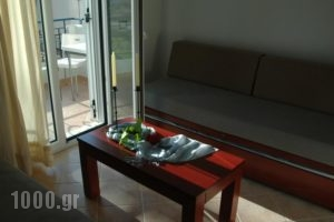 Anavra Studios_best prices_in_Hotel_Ionian Islands_Lefkada_Sivota