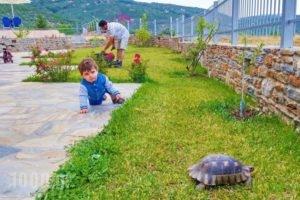 Kala Nera Panorama_best prices_in_Hotel_Thessaly_Magnesia_Kato Gatzea