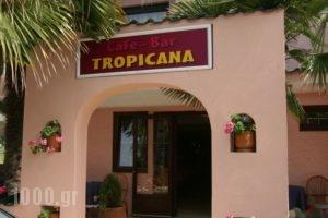 Tropicana_best prices_in_Hotel_Macedonia_Pieria_Paralia Katerinis