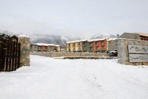 Domotel Neve Mountain Resort' Spa_best deals_Hotel_Macedonia_Pella_Edessa City