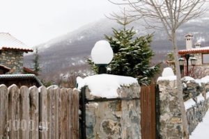 Domotel Neve Mountain Resort' Spa_travel_packages_in_Macedonia_Pella_Edessa City