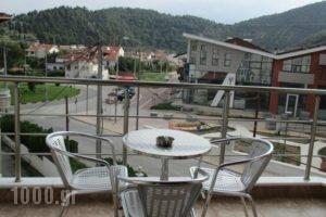Kyknos De Luxe Suites_best deals_Hotel_Macedonia_kastoria_Kastoria City