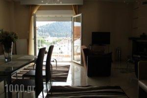 Kyknos De Luxe Suites_best prices_in_Hotel_Macedonia_kastoria_Kastoria City