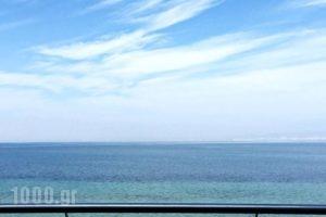 Golden Star City Resort_best prices_in_Hotel_Macedonia_Thessaloniki_Thessaloniki City