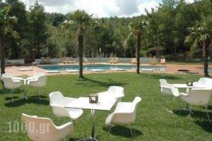 Hotel Casino Xanthi_best deals_Hotel_Thraki_Xanthi_Xanthi City