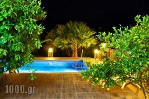 Villa Domenico_holidays_in_Villa_Crete_Chania_Sfakia