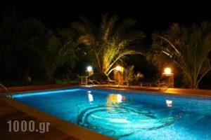 Villa Domenico_lowest prices_in_Villa_Crete_Chania_Sfakia