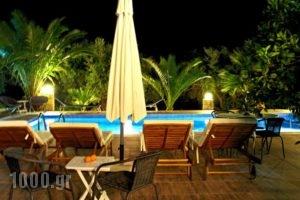 Villa Domenico_best prices_in_Villa_Crete_Chania_Sfakia
