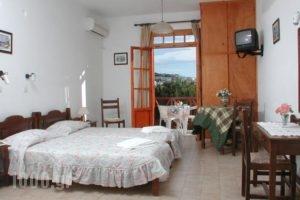 Likio Studios_holidays_in_Hotel_Cyclades Islands_Andros_Batsi