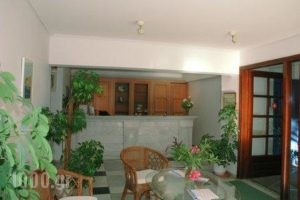 Samaina Maisonettes_holidays_in_Apartment_Aegean Islands_Samos_Karlovasi